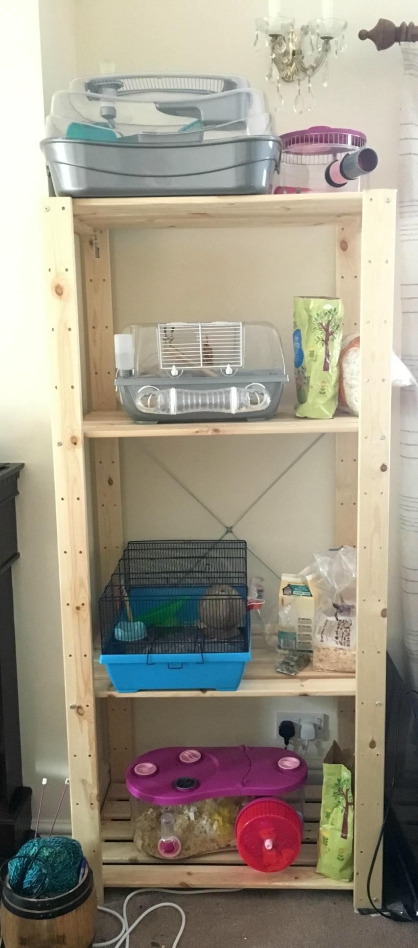 hamstershelf.jpg