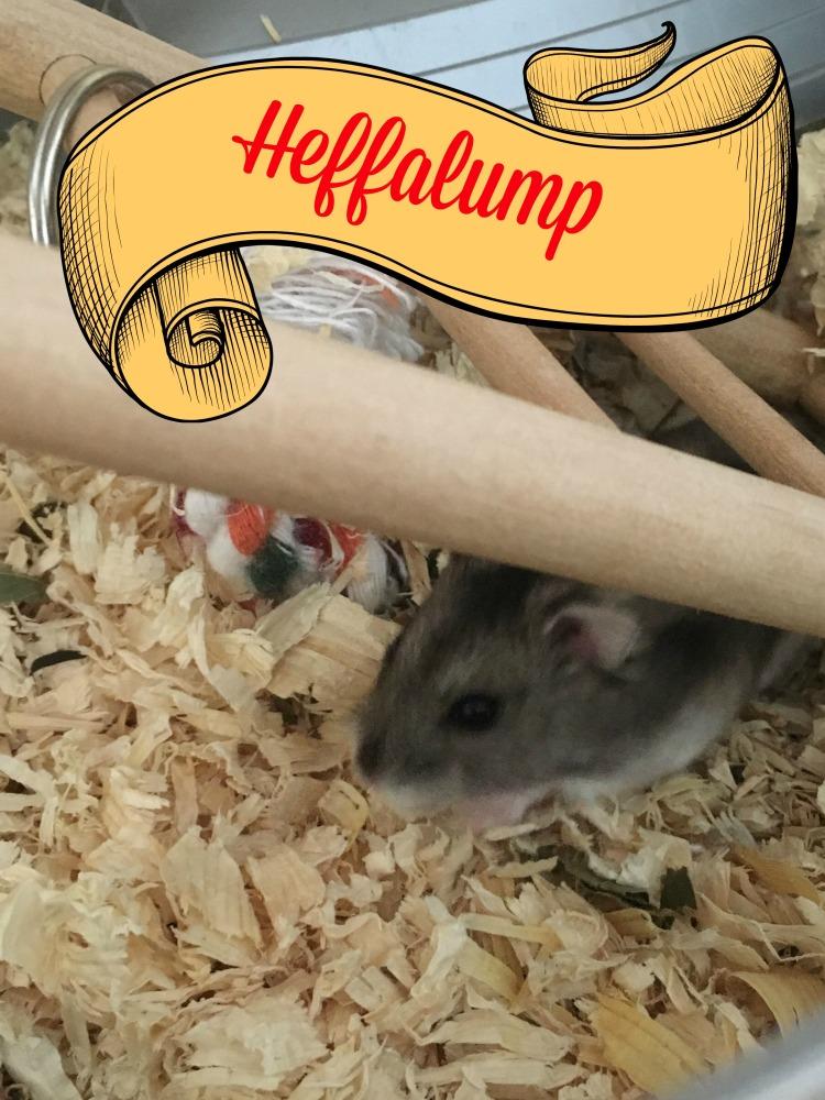 Heffalump.jpg